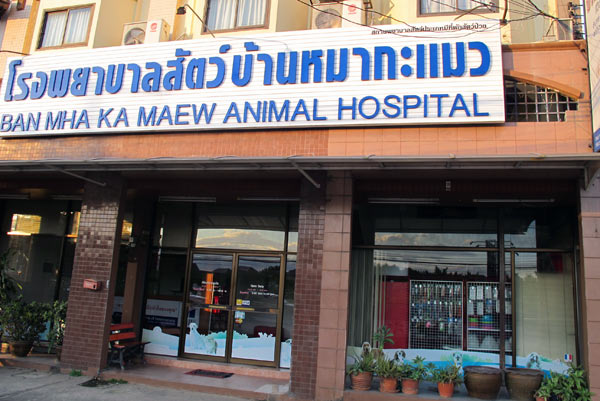 Ban Mha Ka Maew Animal Hospital