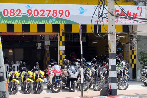 Bikky Chiang Mai