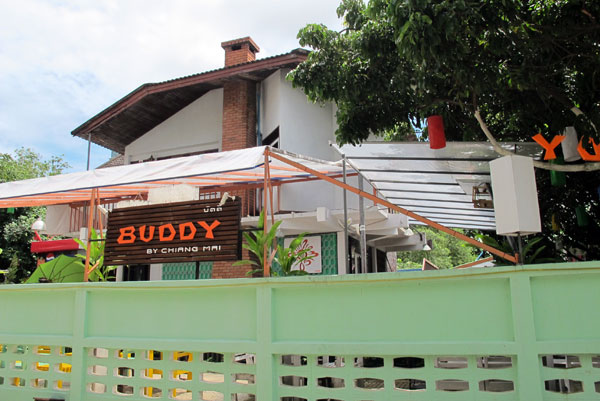 Buddy by Chiang Mai