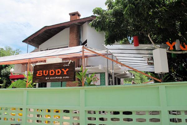 Buddy by Chiang Mai