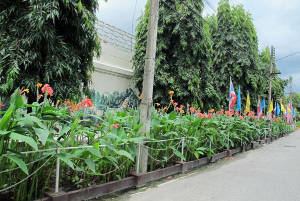 Chiang Mai Women's Correctional Institution