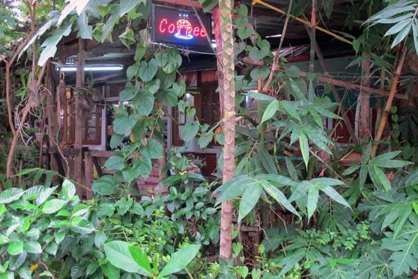 Coffee in Home @Phumokfa