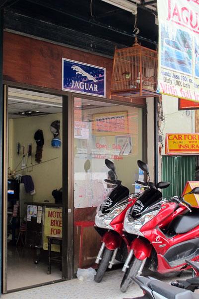 Jaguar Motorbike & Car Rent