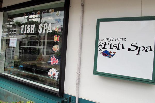 Mae Ping Fish Spa