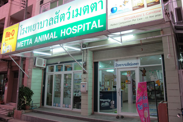 Metta Animal Hospital @Chiang Mai Land