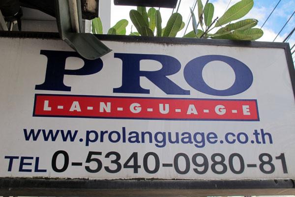 Pro Language