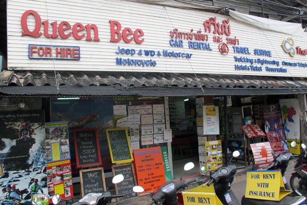 Queen Bee Travel Service