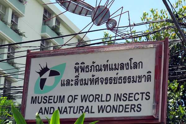 The Musuem of World Insects and Natural Wonders