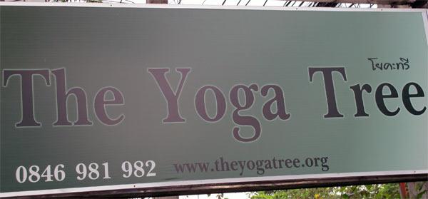 The Yoga Tree