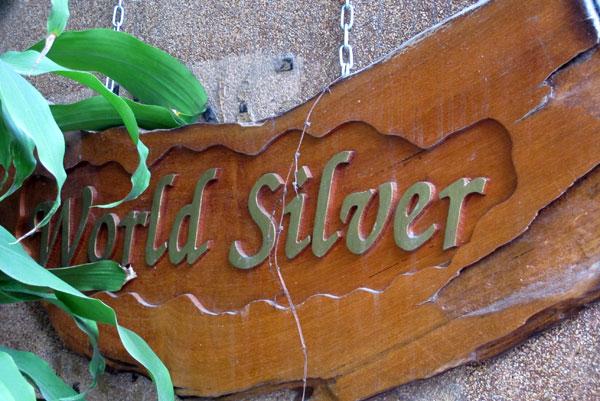 World Silver
