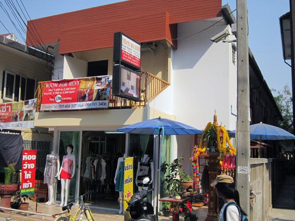 Chiang Mai Rose