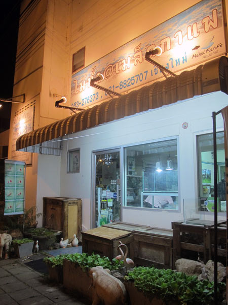 MaLed Kah Fe Kitchen
