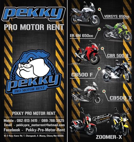 Pekky Pro Motor Rent