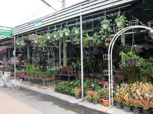 Suan Impol @Kamthieng Flower Market